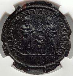 SEPTIMIUS SEVERUS Nicopolis ASCLEPIUS HYGEIA TELESPHORUS Roman Coin NGC i66648