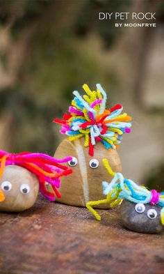DIY Pet Rock craft for kids