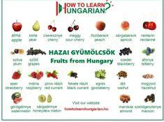 Hungarian vocabulary for beginners: the fruits Croatian Recipes, Hungarian Recipes, Hungarian Flag, Banana Dessert, Dessert Bread, Plum Fruit, English For Beginners, Exotic Fruit, German Language