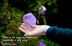 Happiness Quotes from the Book: Finding Happiness Day by Day [watch video]