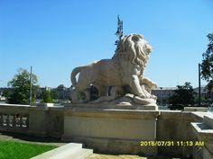 Budapest, Lion Sculpture, Statue, Art, Art Background, Kunst, Performing Arts, Sculptures, Sculpture