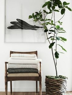 Plant en vaas leuk voor in slaapkamer
