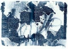 Karen Molloy   cyanotype