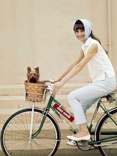 Yorkie - I think not top of my list but if it's good enough for Audrey how am I to question:) I really like the thought of a dog I can pop in my bike basket