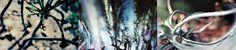 #mosaico2 #fotografia by Verónica #iglesia #DMAgallery 10000artistas.com/galeria/26-fotografia-mosaico--2-pesos-0.00-veronica-iglesia/   Más obras del artista: 10000artistas.com/obras-por-usuario/3-veronicaiglesia/ Publica tu obra GRATIS! 10000artistas.com Seguinos en facebook: fb.me/10000artistas Twitter: twitter.com/10000artistas Google+: plus.google.com/+10000artistas Pinterest: pinterest.com/dmartistas/artists-that-inspire/ Instagram: instagram.com/10000artistas