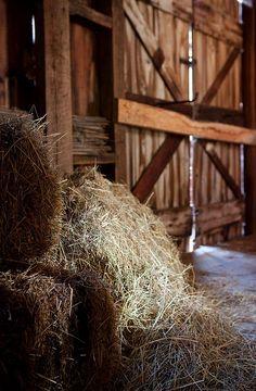 Winter on the Ranch Country Barns, Old Barns, Country Living, Country Roads, Country Charm, Country Style, Rustic Charm, Farmhouse Style, Farm Barn
