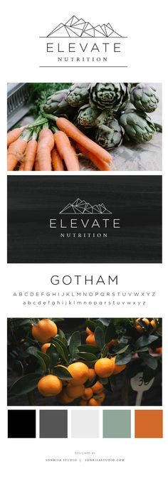 Logo design mood board for nutrition business. Client wanted a mountain, geometric graphic that was simple, modern, and cohesive.