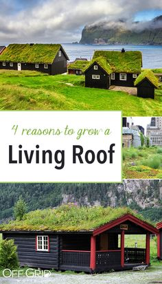 4 Best Reasons To Grow a Living Roof! Beautiful, Beneficial, Efficient, Green Living Rooftops – Off Grid World 4 Best Reasons To Grow a Living. Extensive Green Roof, Green Roof System, Roof Architecture, Sustainable Architecture, Residential Architecture, Contemporary Architecture, Living Roofs, Living Walls, Exterior Paint Colors For House