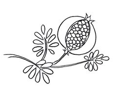 Red Pomegranate Seeds Coloring Pages Picture Pomegranate Drawing, Pomegranate Art, Pomegranate Tattoo, Crewel Embroidery, Embroidery Patterns, Print Patterns, Pomegranate Pictures, Armenian Culture, Digital Stamps