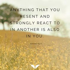 Anything that you resent and strongly react to in another is also in you