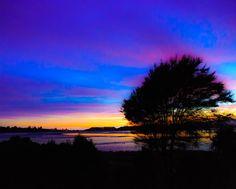 Blue and Purple Glory by Kay Kochenderfer