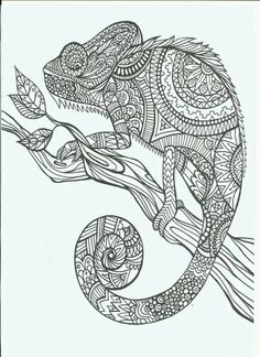 find this pin and more on arterapia animales line art doodle zentangle adult coloring page