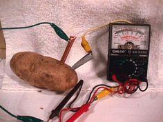 Potato Experiments For Kids