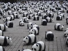 Panda cubs and nanny Mei's war Ⅱ - YouTube