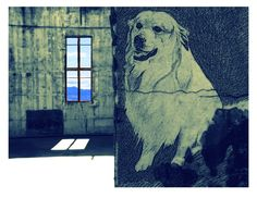 Mountain Dogs, Photographs, Facebook, Drawings, Painting, Art, Art Background, Photos, Painting Art