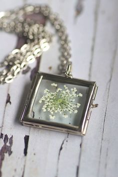 Queen Anne's Lace Locket - Real Flower - Antique Silver - Glass Locket Necklace - Dried Flower Jewellery - Handmade OOAK Jewelry - Silver