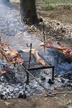 asado al palo Rodeo, Firewood, Chile, Catering, Texture, Crafts, Recipes, Woodburning, Chili Powder
