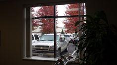 Affinity 15 Window Film after installation Window Films, Commercial, Windows, Sun, Ramen, Window, Solar