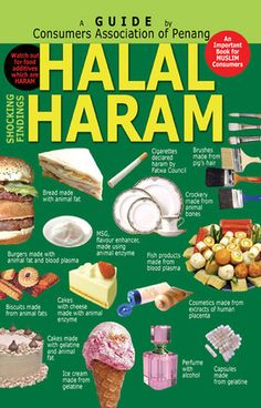 Pakistani appetizers and snacks 30 authentic pakistani appetizer islam for kids crafts about halal haram forumfinder Gallery
