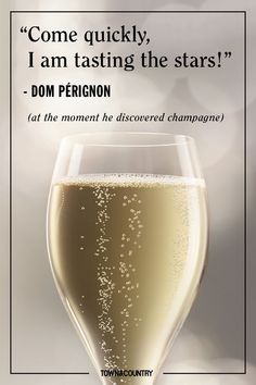 10 Best Champagne Quotes - Famous Sayings About Champagne Whether it's a celebration or just simply brunch, we can never honorably say no to a glass of champagne. Champagne Quotes, Best Champagne, Champagne Party, Glass Of Champagne, Sparkling Wine, Champagne Brands, Champagne Glasses, Great Gatsby Party, Nutrition Education
