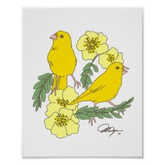 Search for customizable Bird posters & photo prints from Zazzle. Check out all of the spectacular designs or make your own! Bird Poster, Poster Art, Poster Prints, Canary Birds, Floral Flowers, Tweety, Artwork, Pikachu, Roses