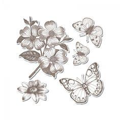 Sizzix Framelits Die Set 5PK w/Stamps - Butterflies #3