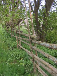 Above Ground Fence Ideas Australia Ideas – 3 Flattering Simple Ideas: Garden Fence 10 Fence Ideas Pictur Fence Landscaping, Backyard Fences, Garden Fencing, Bamboo Fencing, Front Yard Fence, Farm Fence, Dog Fence, Aluminum Fence, Metal Fence