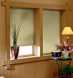 gallery cellular shades single cell light filtering closeout lights and window