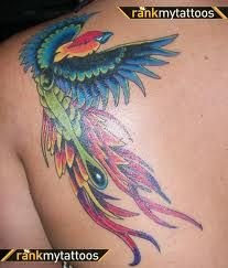 9054a49b27668 Phoenix tattoo. . Wallpaper and background images in the Phoenix birds .
