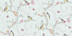 Phoebe Duck Egg (98083) - Albany Wallpapers - An all over, trailing wallpaper design featuring trailing tree branches with vibrant coloured birds, flowers and butterflies. Shown here in various colours on a duck egg blue green background. Other colourways are available. Please request a sample for a true colour match.