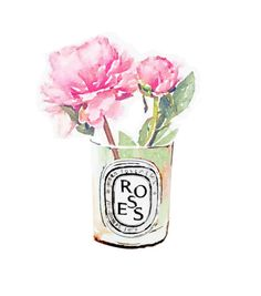 Items similar to Diptyque Candle Pink Rose Flower Vase Print from Watercolor Painting Fashion Illustration Poster on Etsy Pink Rose Flower, Pink Roses, Pink Peonies, Peony, Pink Flowers, Watercolor Flowers, Watercolor Paintings, Watercolours, Diptyque Candles