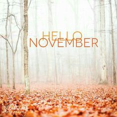 Hello November - New month, fresh starts, positive thoughts!