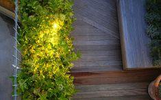 APROAPE DE PRIETENI:  Idei de amenajări exterioare- lucruri simple care... Outdoor Structures, Plants, Plant, Planets