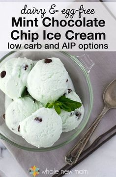 Mint Chocolate Chip Ice Cream-that's Dairy and Sugar Free! This dairy-free ice cream is super-easy to make and sooo much cheaper than those $7 per pint brands in the health food store. Dairy-Free ice cream lovers--enjoy!!!