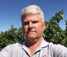 Ken Wilson, president of Wilson Vineyards in #Clarksburg, benefits from complete mechanization of #winegrapes for harvest. To read more go to http://californiaagtoday.com/wineries-grapes-mechanized-labor/