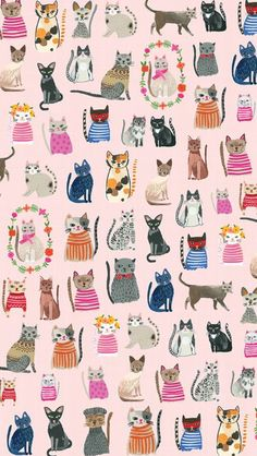 New wallpaper cat illustration gatos Ideas Cat Roll, Cat Background, Photo Chat, Cat Wallpaper, Trendy Wallpaper, Animal Wallpaper, Cat Pattern Wallpaper, Cat Drawing, Crazy Cats