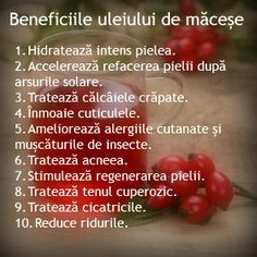 Scapa de estetician: Extraordinarele beneficii ale uleiului de MACESE Good To Know, Body Care, Natural Remedies, Healthy Lifestyle, Beauty Hacks, Health Fitness, Hair Beauty, Skin Care, Food