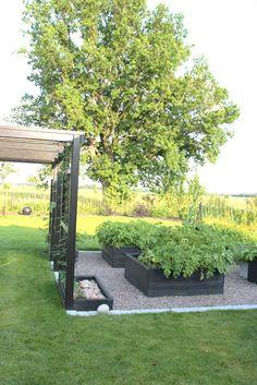 Sophisticated raised garden with gravel Veg Garden, Home And Garden, Gazebos, Raised Garden Beds, Raised Beds, Dream Garden, Garden Planning, Garden Projects, Amazing Gardens