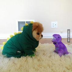 Rawr! I am a puppysaur!