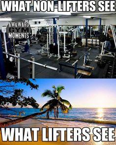 Gym = Paradise #LOL #gymhumor