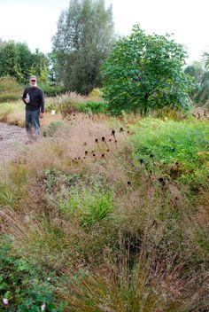 Roy Diblick en su jardín experimental de su vivero Northwind Perennials, USA. Foto Estudio Amalia Robredo