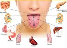 Aprender a sua língua! A linguagem, entre outras funções importantes, serve como um espelho do corpo - por isso pode ser determinada e os problemas do estado de imunidade, e diabetes, e nos rins