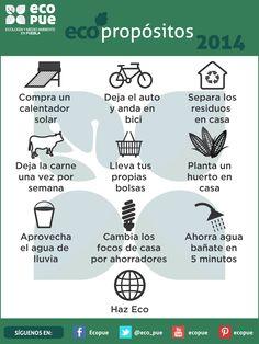 #HazEco 10 ecopropósitos para este 2014