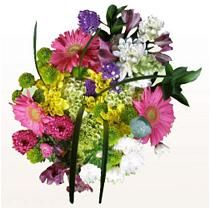 Find a great collection of Bulk Flowers at Costco. Enjoy low warehouse prices on name-brand Bulk Flowers products.