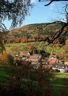 The Top 10 Sights in Germany: How Many Have You Seen?: The Black Forest