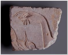 Royal hand  Period: New Kingdom, Amarna Period  Dynasty: Dynasty 18  Reign: reign of Akhenaten  Date: ca. 1353–1336 B.C.  Geography: From Egypt; Probably from Middle Egypt, Hermopolis (Ashmunein; Khemenu); Probably originally from Amarna (Akhetaten)  Medium: Limestone, paint