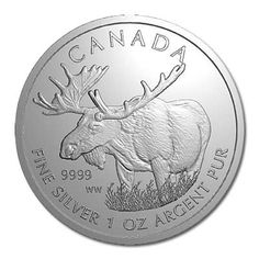 Trusted expert on Canadian Silver Wildlife Series. Buy Canadian Silver 1 oz Moose 2012 online with Golden Eagle Coins. Call Trusted coin dealer since Gold And Silver Coins, Silver Bars, Golden Eagle Coins, Saving Coins, Moose Pictures, Moose Deer, Canadian Things, Gold American Eagle, Canadian Wildlife