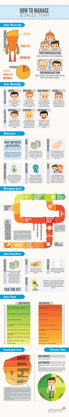 How to Manage a Sales Team Infographic.