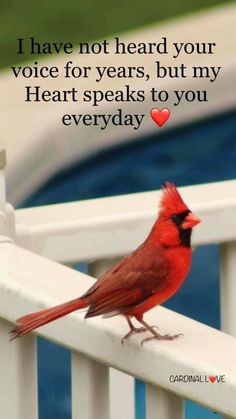 Always in my Heart Mom In Heaven Quotes, Dad In Heaven, Mom Quotes, Mom I Miss You, Mom And Dad, Pics For Fb, Cute Friendship Quotes, Loss Of Mother, Missing My Son