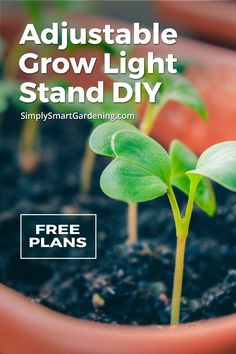 Seed Starting Tips It's easy to grow healthy seedlings when you have a grow light stand.